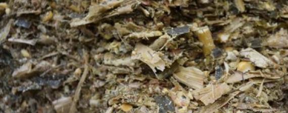 Obrázok článku: Siláže - hodnotenie živinovej a fermentačnej kvality